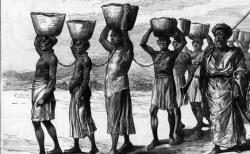 Slavery in South Africa main image